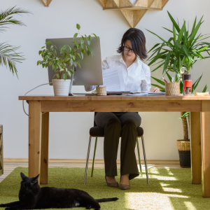 woman at desk with cat sitting at feet representing how a VA can help your business with email management