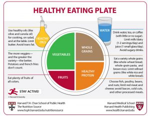Graphic - THE LOOK OF A PLANT-BASED MEAL INFO GRAPHIC HARVARD EDU